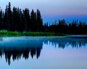 Lelki béke a belső társammal