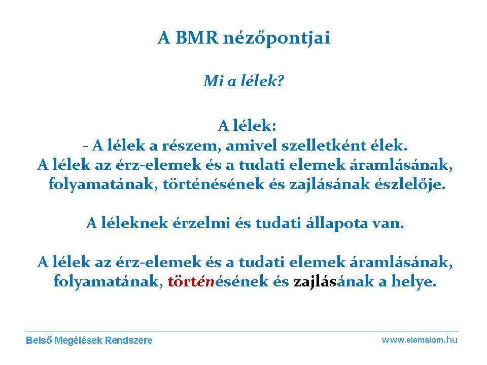 BMR Nézőpontok 1