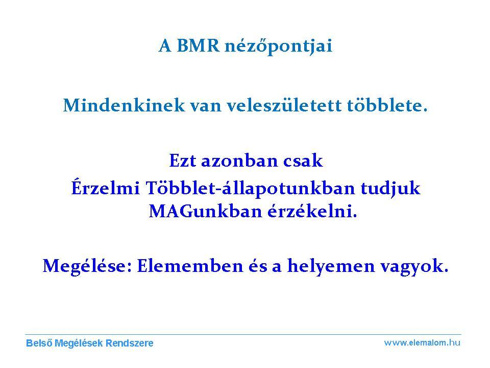 BMR Nézőpontok 10